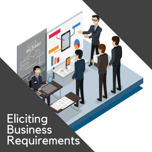 Eliciting Business Requirements Eliciting Business Requirements